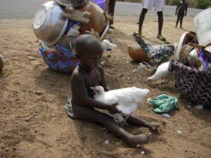 Amici nel mondo onlus Benin 27 300x225 - Amici-nel-mondo-onlus-Benin (27)Amici nel mondo onlus Benin 27 300x225 - Amici-nel-mondo-onlus-Benin (27) - -