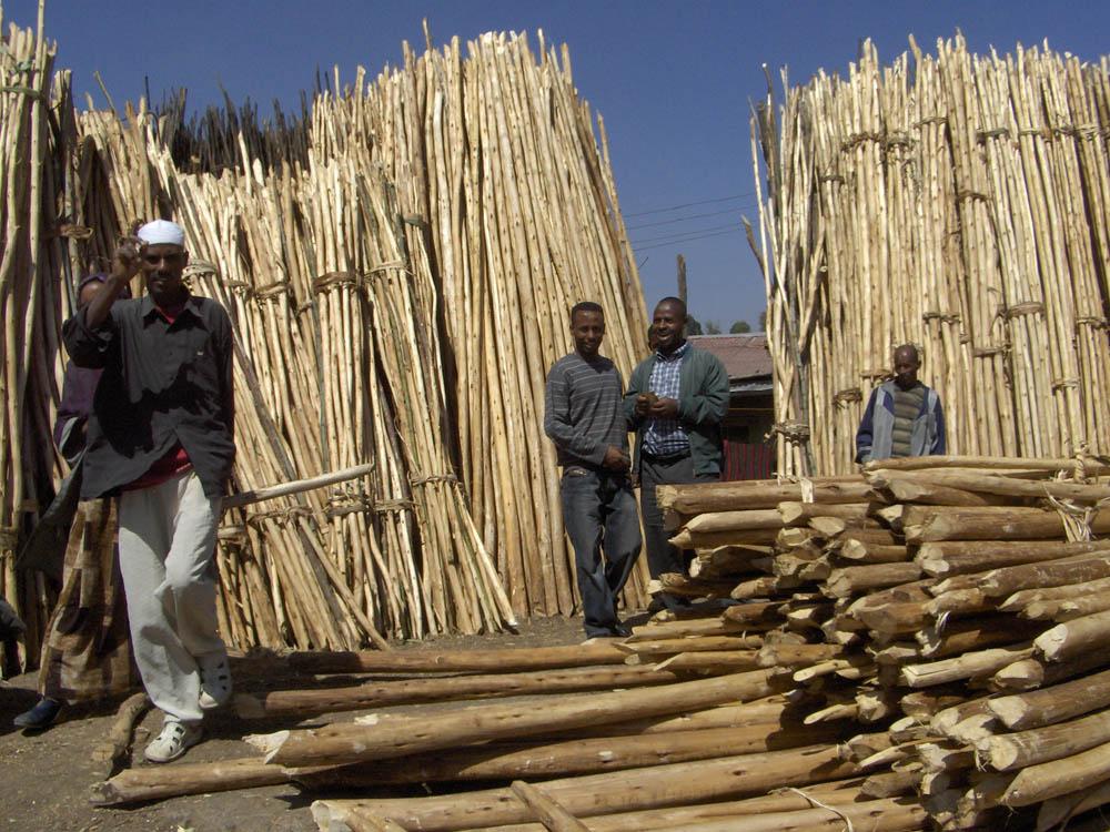 Etiopia 84 1 - EtiopiaEtiopia 84 1 - Etiopia - -