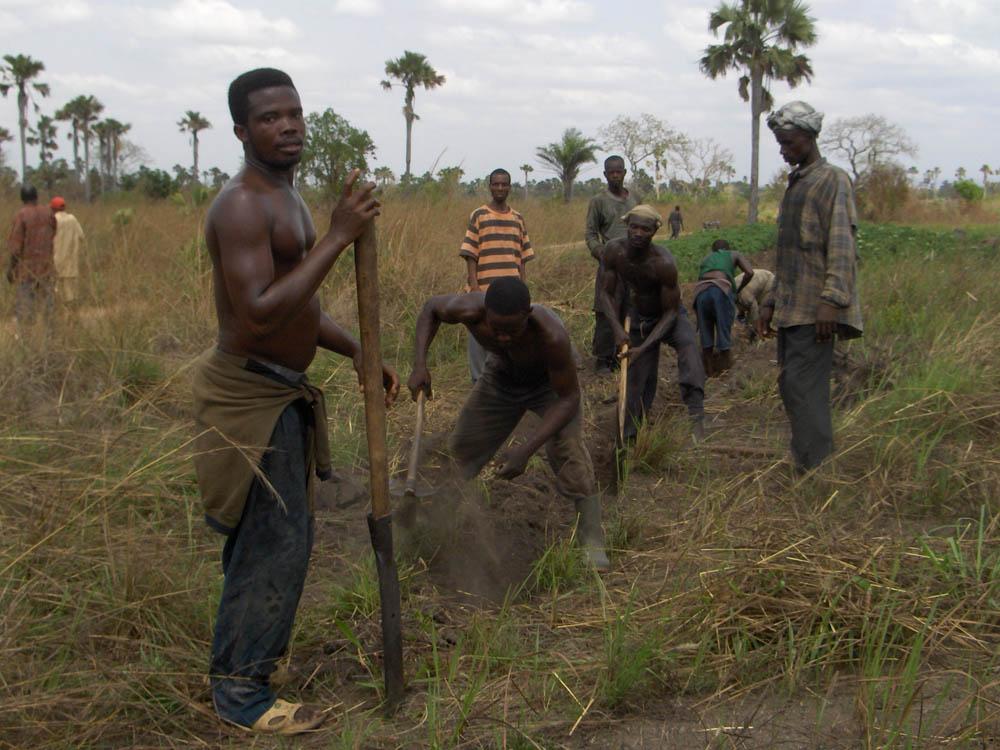 Ghana 105 - GhanaGhana 105 - Ghana - -