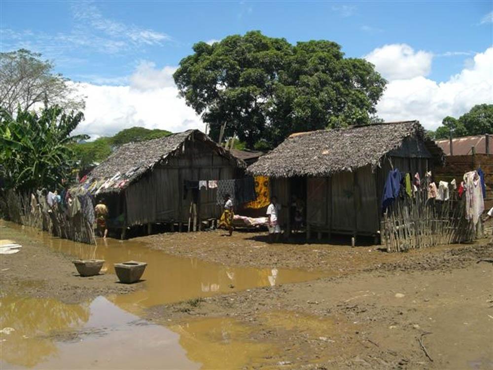 Madagascar 68 - MadagascarMadagascar 68 - Madagascar - -