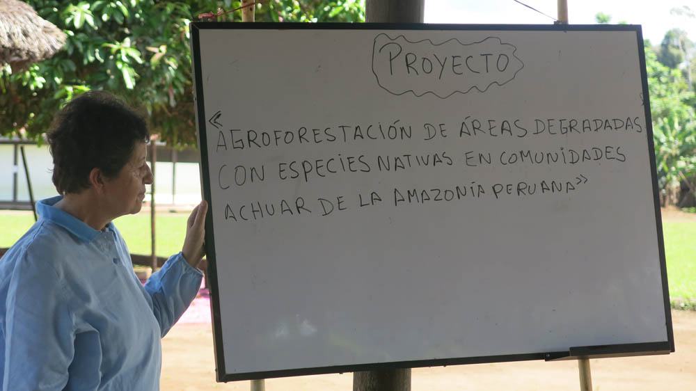 Peru 29 - PerùPeru 29 - Perù - -