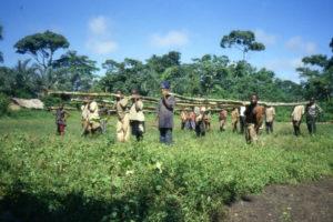 Repubblica del Congo 43 300x200 - Repubblica-del-Congo-43Repubblica del Congo 43 300x200 - Repubblica-del-Congo-43 - -