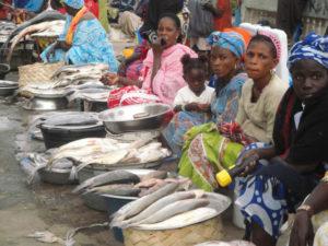 Senegal 68 300x225 - Senegal-68Senegal 68 300x225 - Senegal-68 - -